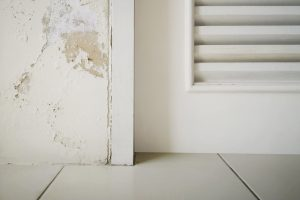 Excessive moisture can cause mold and peeling paint wall such as rainwater leaks or water leaks.